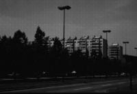 flats-p_2.jpg