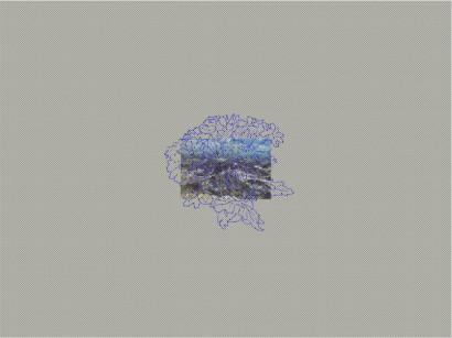 smalllandscape.jpg