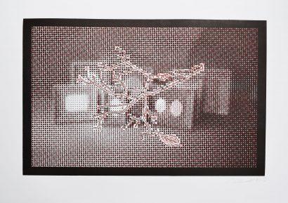 FramesBranchand-leaf.jpg
