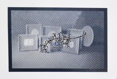 FramesGrapes.jpg